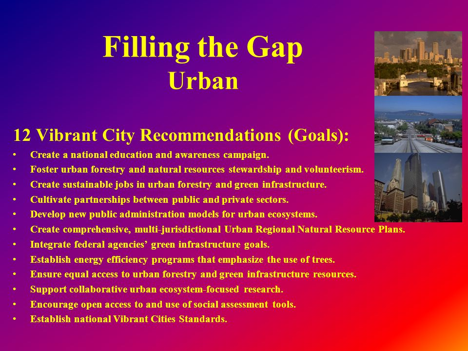 Filling the Gap Urban 12 Vibrant City Recommendations (Goals): Create a national education and awareness campaign.