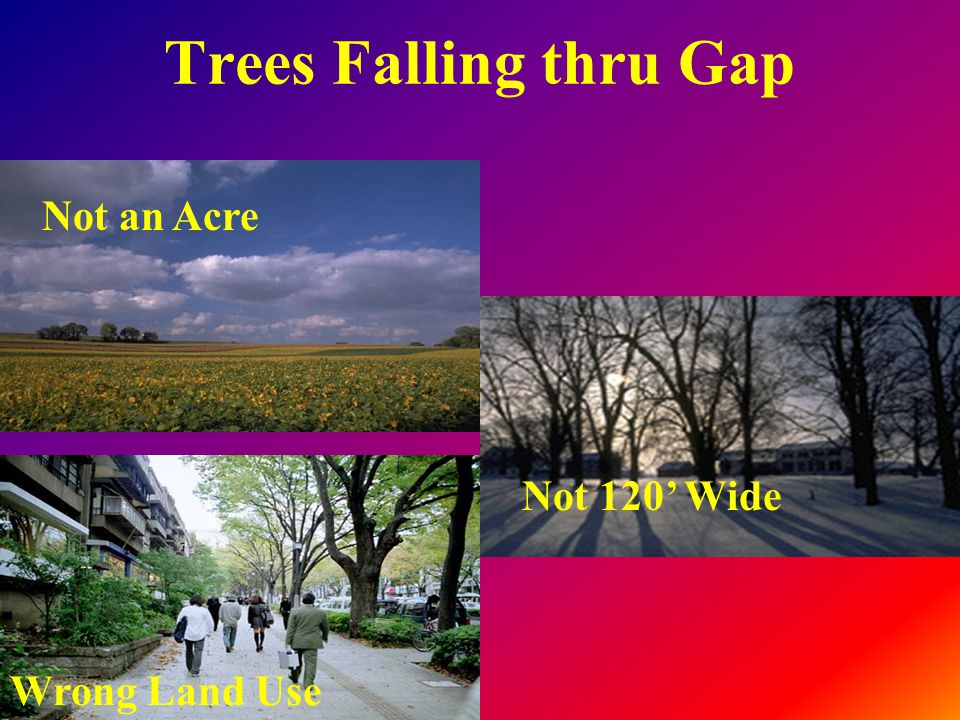 Trees Falling thru Gap Not an Acre Not 120' Wide Wrong Land Use