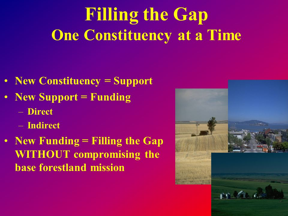 Filling the Gap One Constituency at a Time New Constituency = Support New Support = Funding –Direct –Indirect New Funding = Filling the Gap WITHOUT co