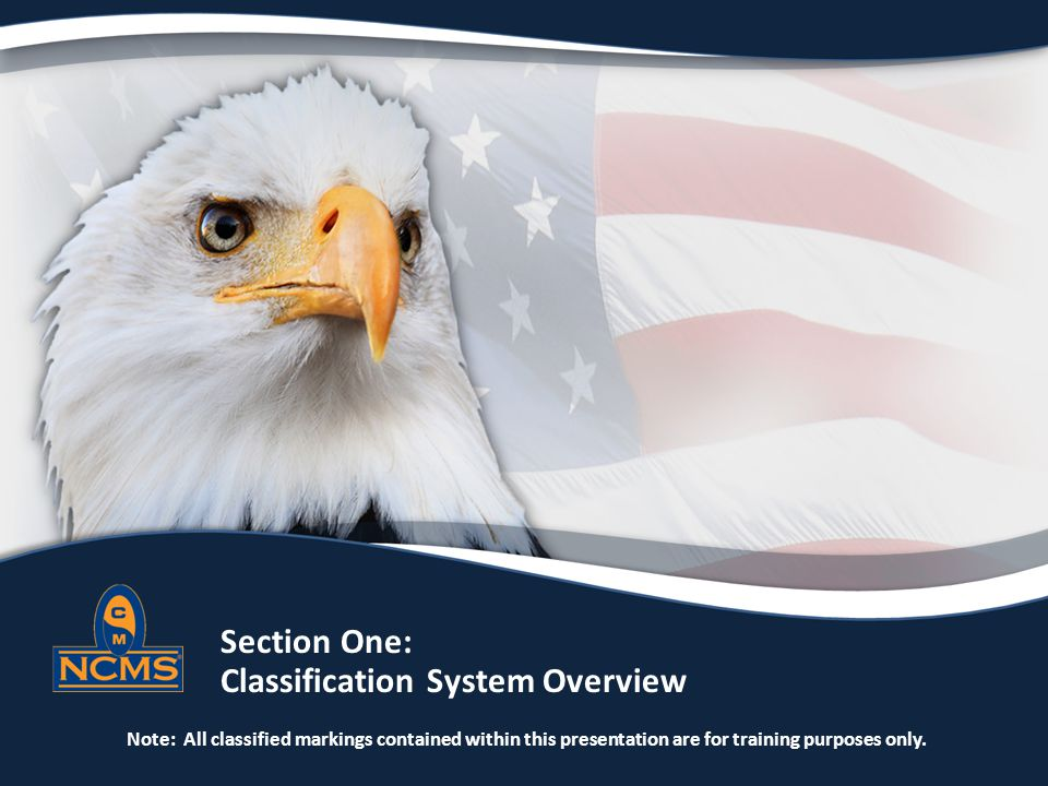 Section One: Classification System Overview Note: All classified markings contained within this presentation are for training purposes only.