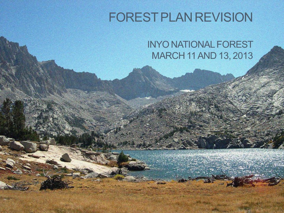 FOREST PLAN REVISION INYO NATIONAL FOREST MARCH 11 AND 13, 2013