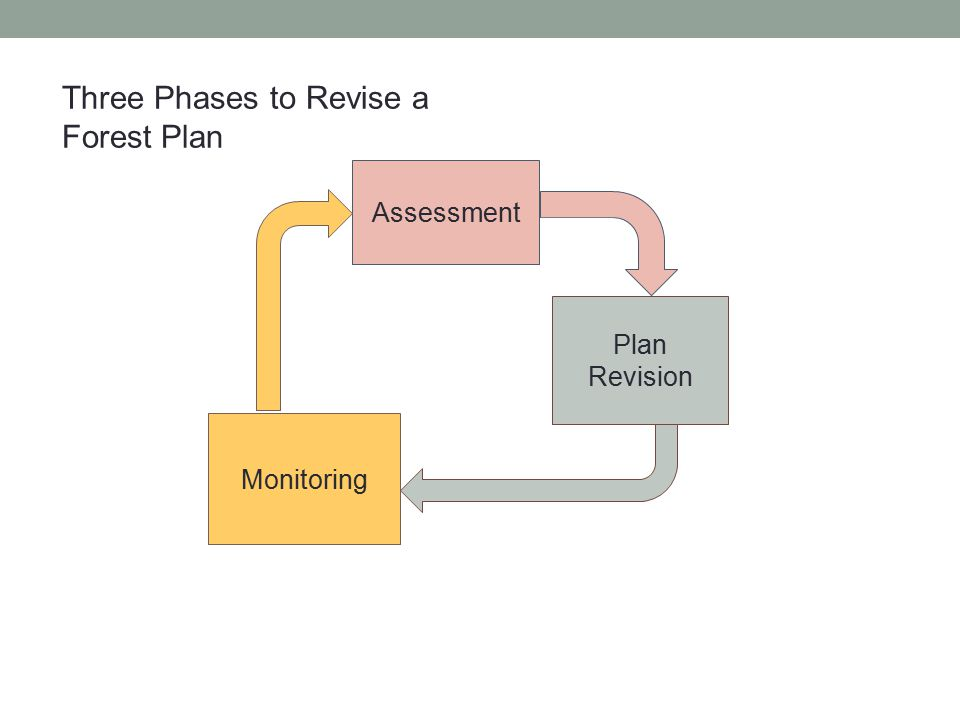 Assessment Plan Revision Monitoring Three Phases to Revise a Forest Plan