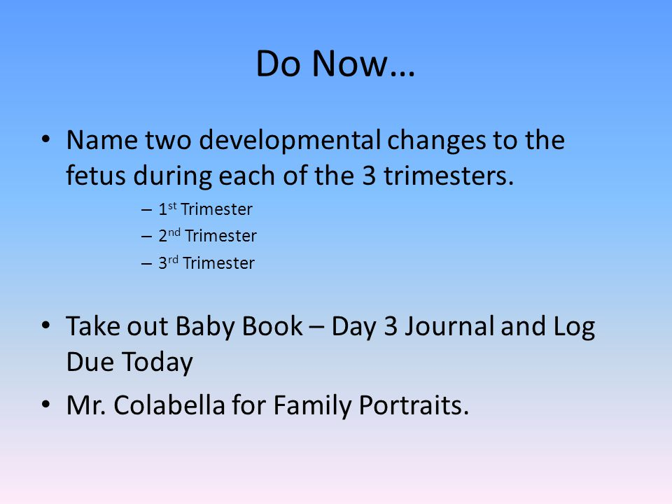 Do Now… Name two developmental changes to the fetus during each of the 3 trimesters.