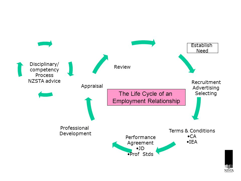 The Life Cycle of an Employment Relationship Establish Need Recruitment Advertising Selecting Terms & Conditions CA IEA Performance Agreement JD Prof Stds Professional Development Disciplinary/ competency Process NZSTA advice Appraisal Review