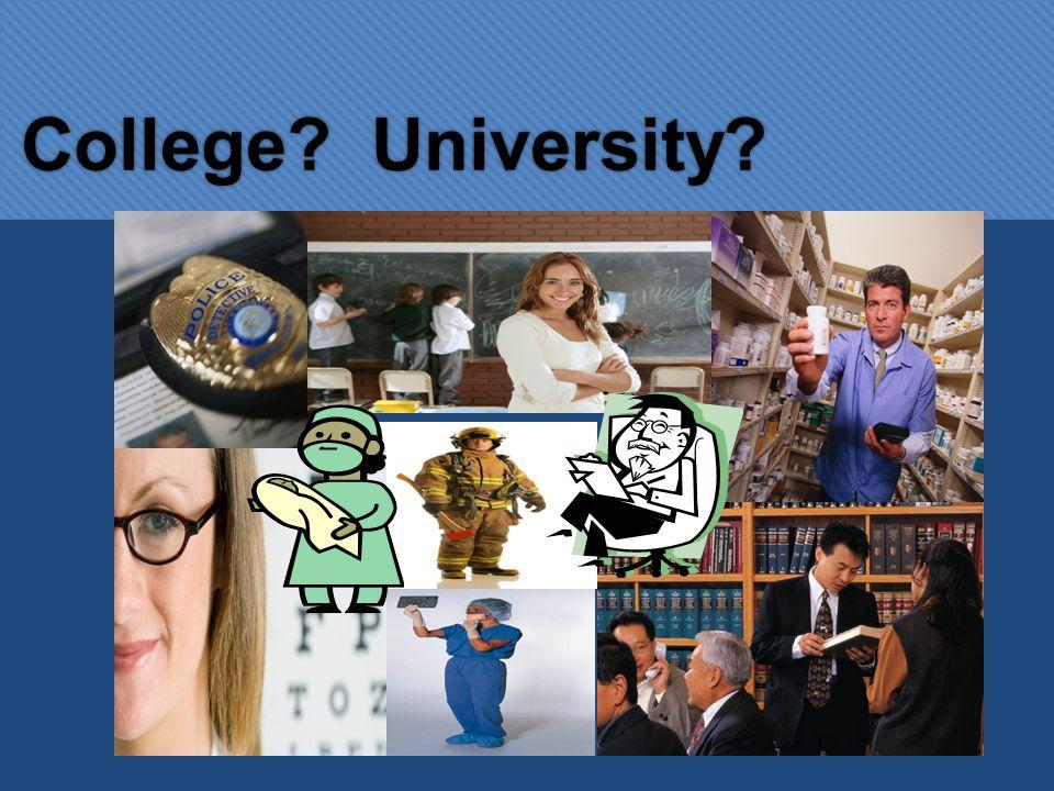 College? University?