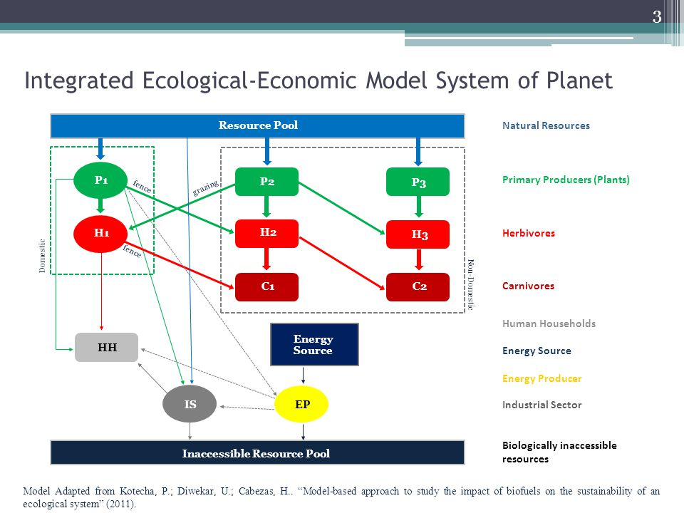Integrated Ecological-Economic Model System of Planet Non-Domestic Domestic Natural Resources Primary Producers (Plants) Herbivores Carnivores Human H