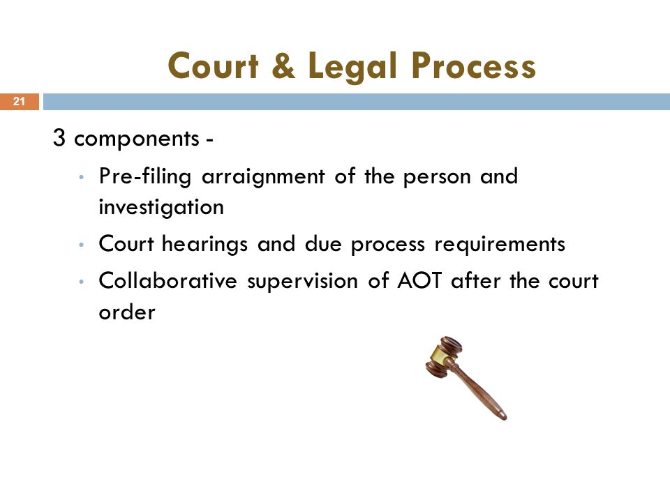 Court & Legal Process 21 3 components - Pre-filing arraignment of the person and investigation Court hearings and due process requirements Collaborative supervision of AOT after the court order