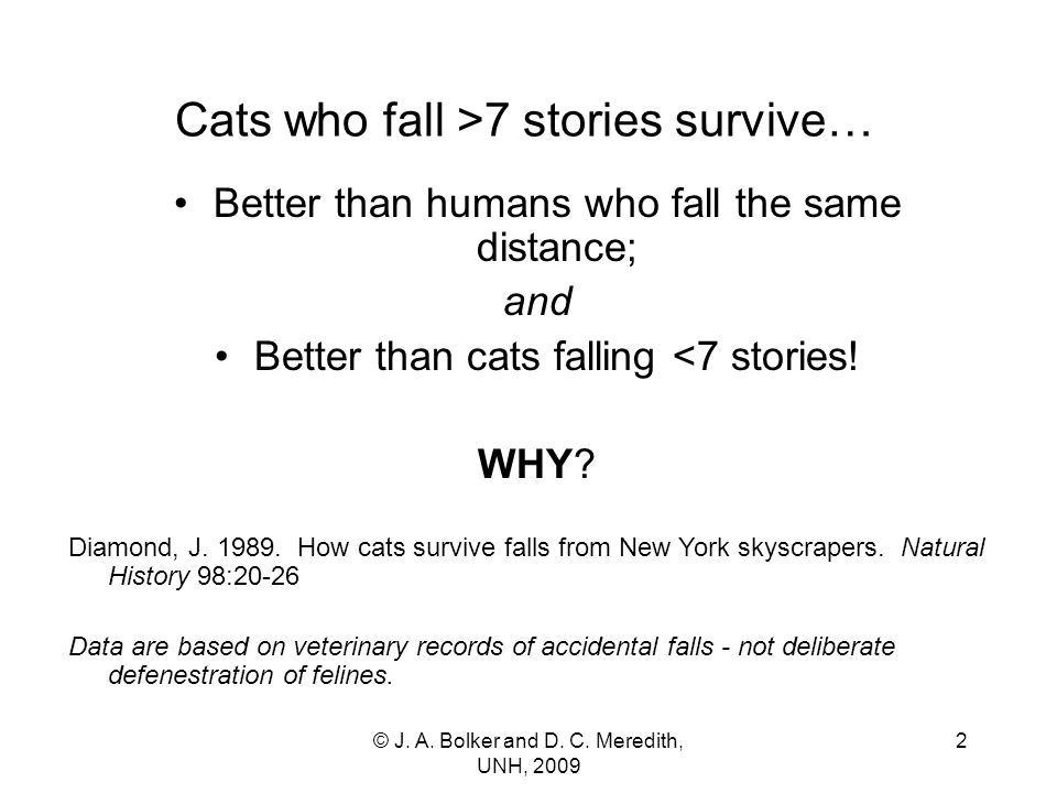 Cats who fall >7 stories survive… Better than humans who fall the same distance; and Better than cats falling <7 stories.