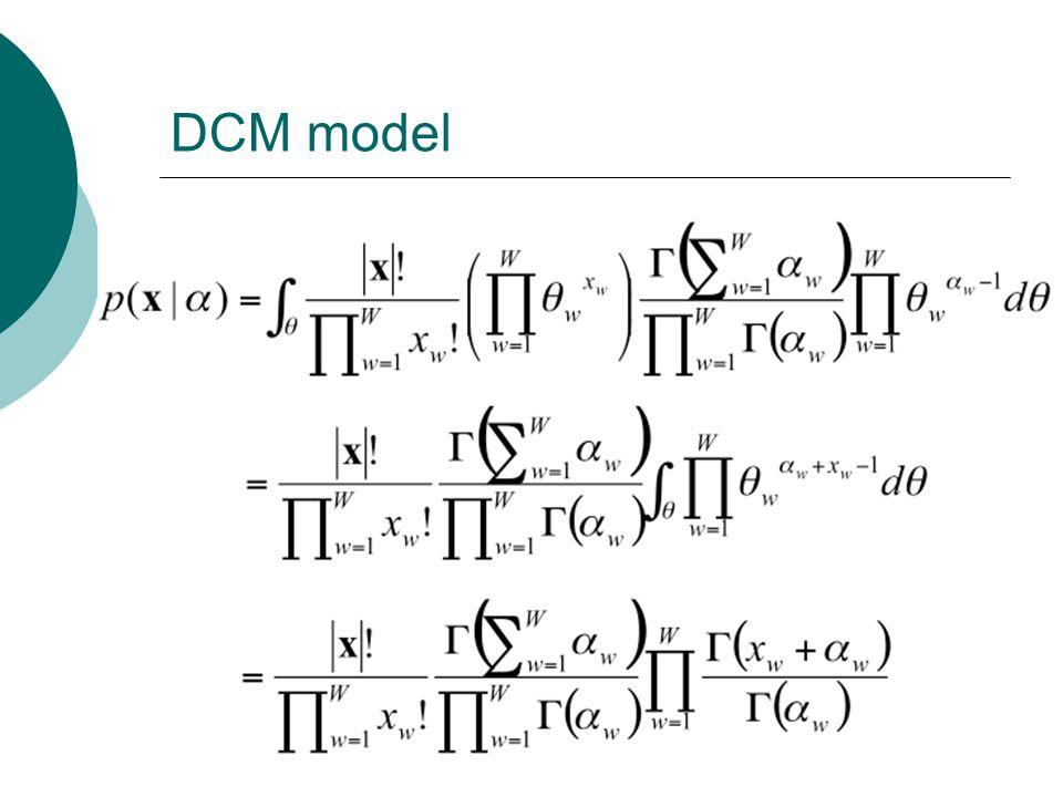 DCM model
