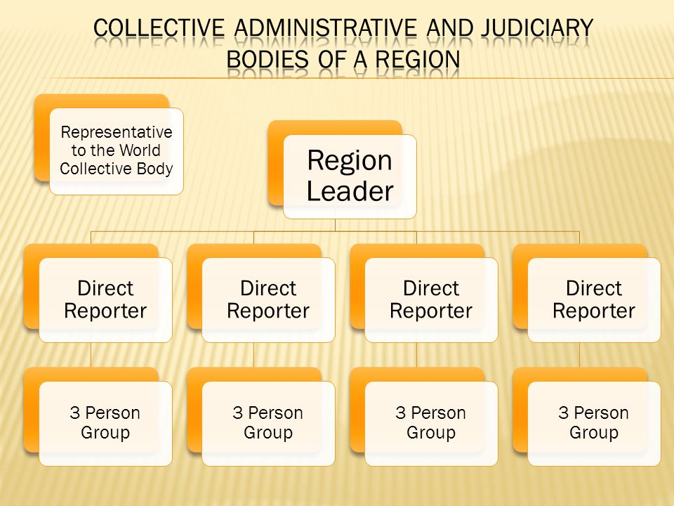 Region Leader Direct Reporter 3 Person Group Direct Reporter 3 Person Group Direct Reporter 3 Person Group Direct Reporter 3 Person Group Representative to the World Collective Body