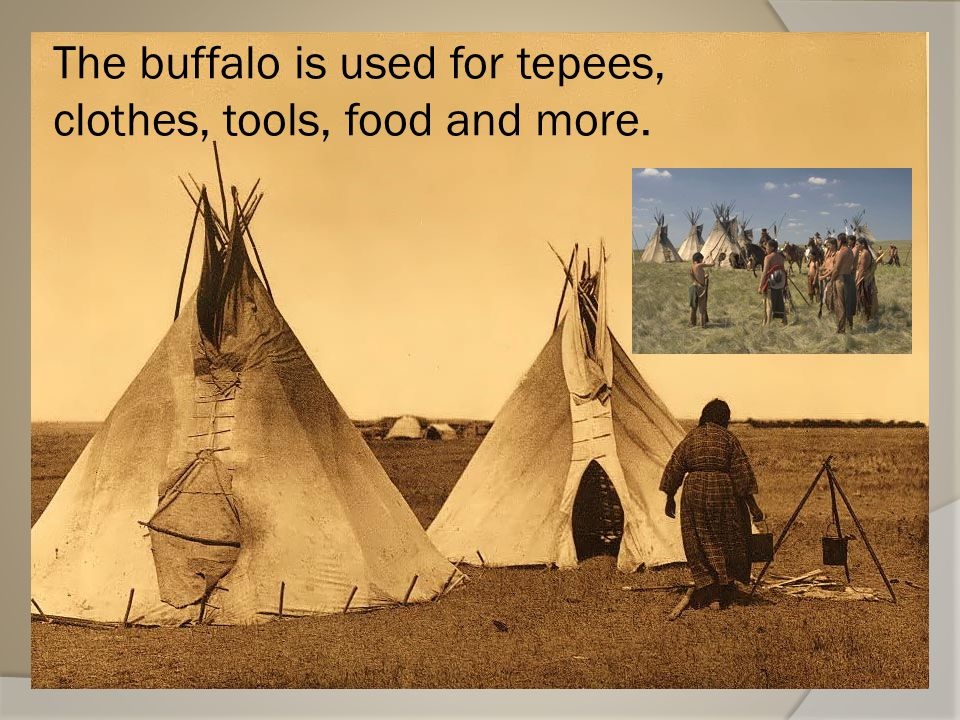 Native Americans  Plains NA depended on the buffalo for food; clothing and shelter.  The plains people were not farmers but they depended on the lan