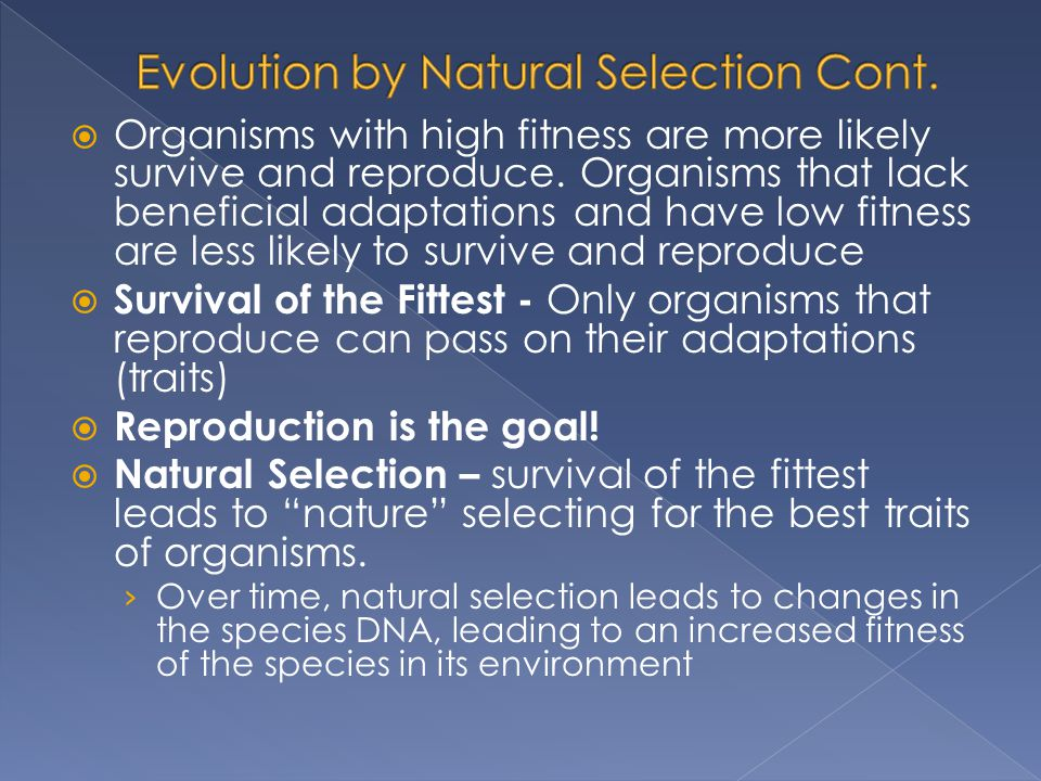  Organisms with high fitness are more likely survive and reproduce.