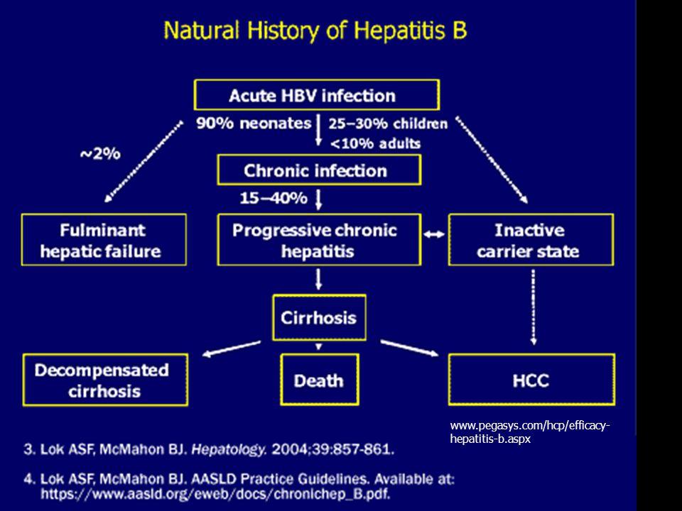 www.pegasys.com/hcp/efficacy- hepatitis-b.aspx