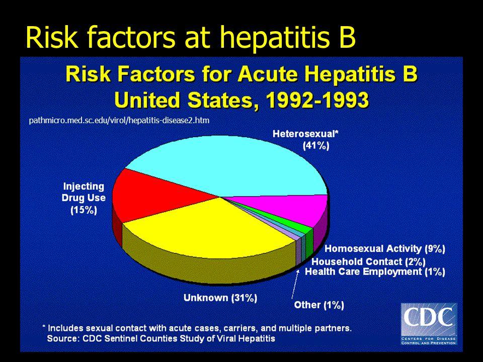 Risk factors at hepatitis B pathmicro.med.sc.edu/virol/hepatitis-disease2.htm