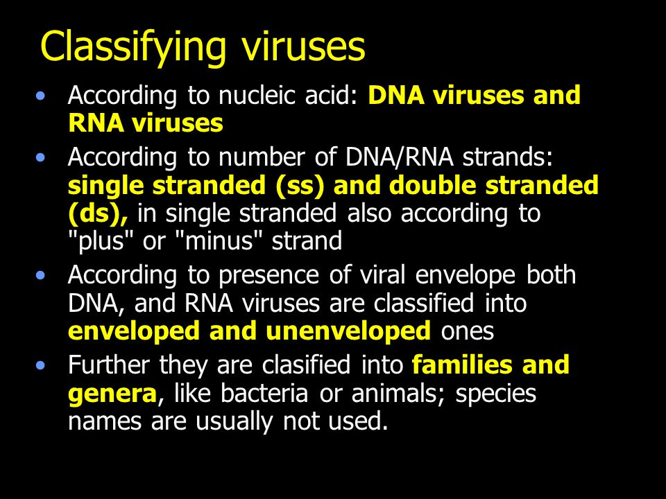 Classifying viruses According to nucleic acid: DNA viruses and RNA viruses According to number of DNA/RNA strands: single stranded (ss) and double stranded (ds), in single stranded also according to plus or minus strand According to presence of viral envelope both DNA, and RNA viruses are classified into enveloped and unenveloped ones Further they are clasified into families and genera, like bacteria or animals; species names are usually not used.