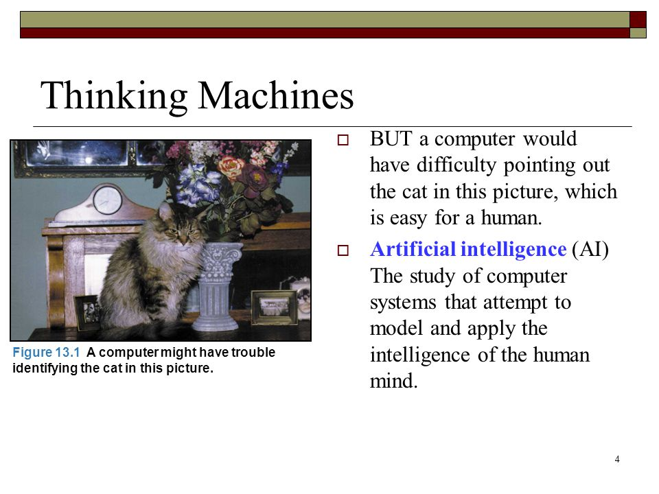4 Thinking Machines  BUT a computer would have difficulty pointing out the cat in this picture, which is easy for a human.