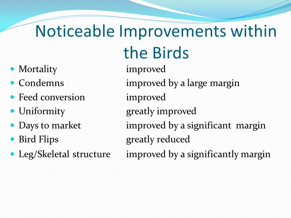 Noticeable Improvements within the Birds Mortalityimproved Condemnsimproved by a large margin Feed conversionimproved Uniformitygreatly improved Days to marketimproved by a significant margin Bird Flipsgreatly reduced Leg/Skeletal structureimproved by a significantly margin