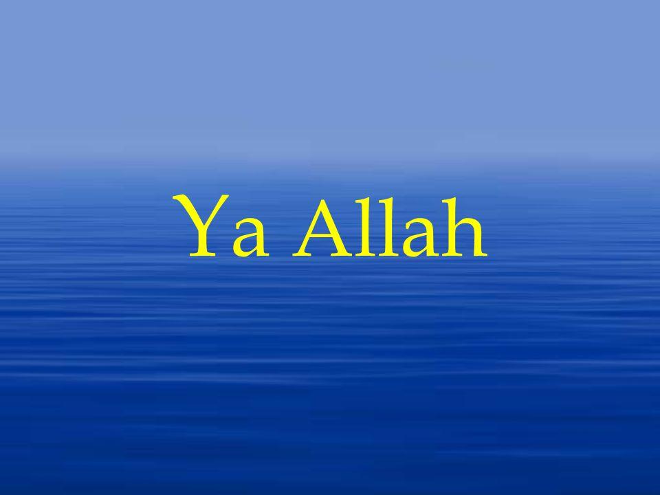 Y a Allah