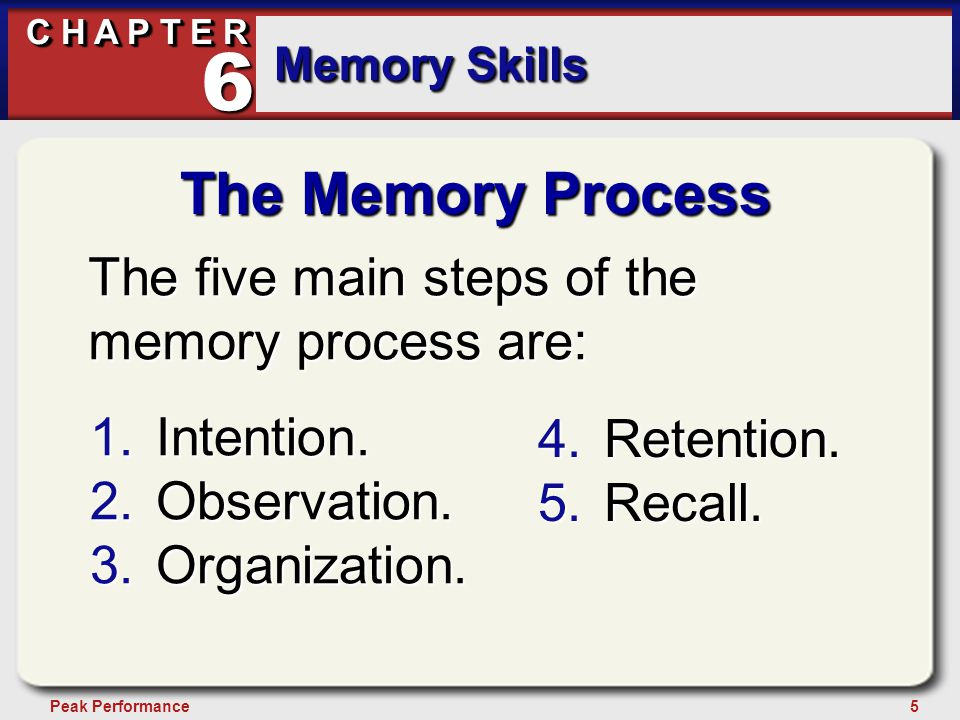 5Peak Performance C H A P T E R Memory Skills 6 The Memory Process The five main steps of the memory process are: 1.Intention.