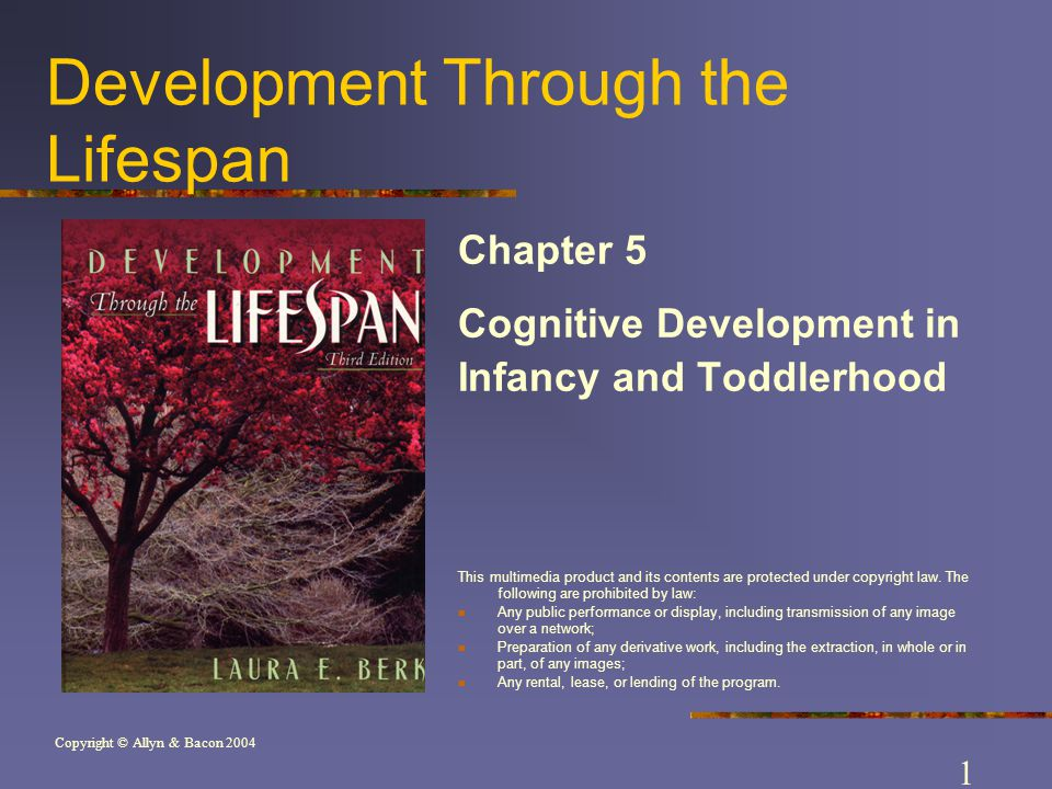 Copyright © Allyn & Bacon 2004 Development Through the Lifespan Chapter 5 Cognitive Development in Infancy and Toddlerhood This multimedia product and