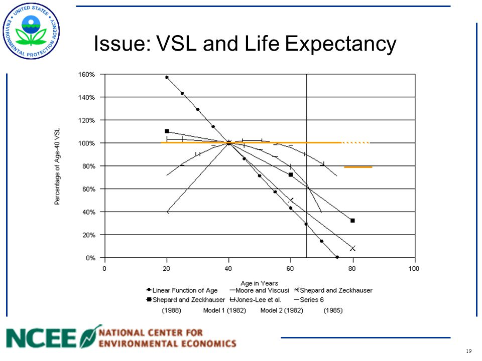 19 Issue: VSL and Life Expectancy