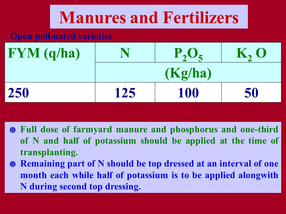 Manures and Fertilizers FYM (q/ha)NP2O5P2O5 K 2 O (Kg/ha) 25012510050 ☻Full dose of farmyard manure and phosphorus and one-third of N and half of potassium should be applied at the time of transplanting.