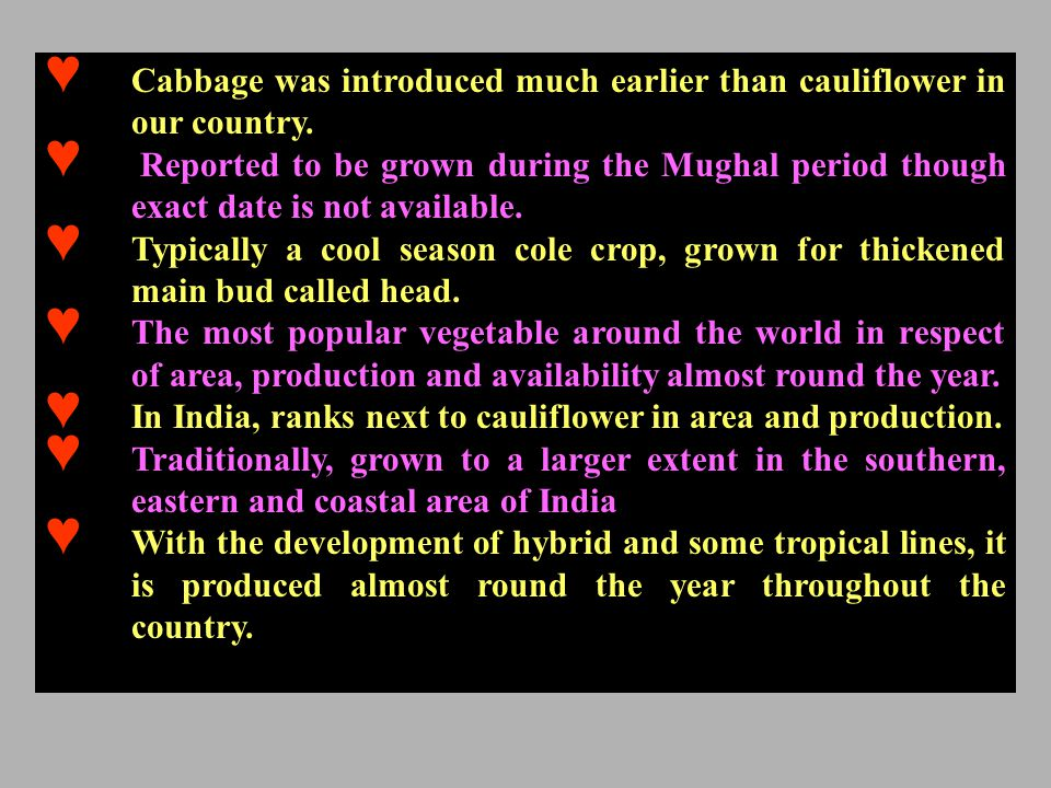 ♥ Cabbage was introduced much earlier than cauliflower in our country.