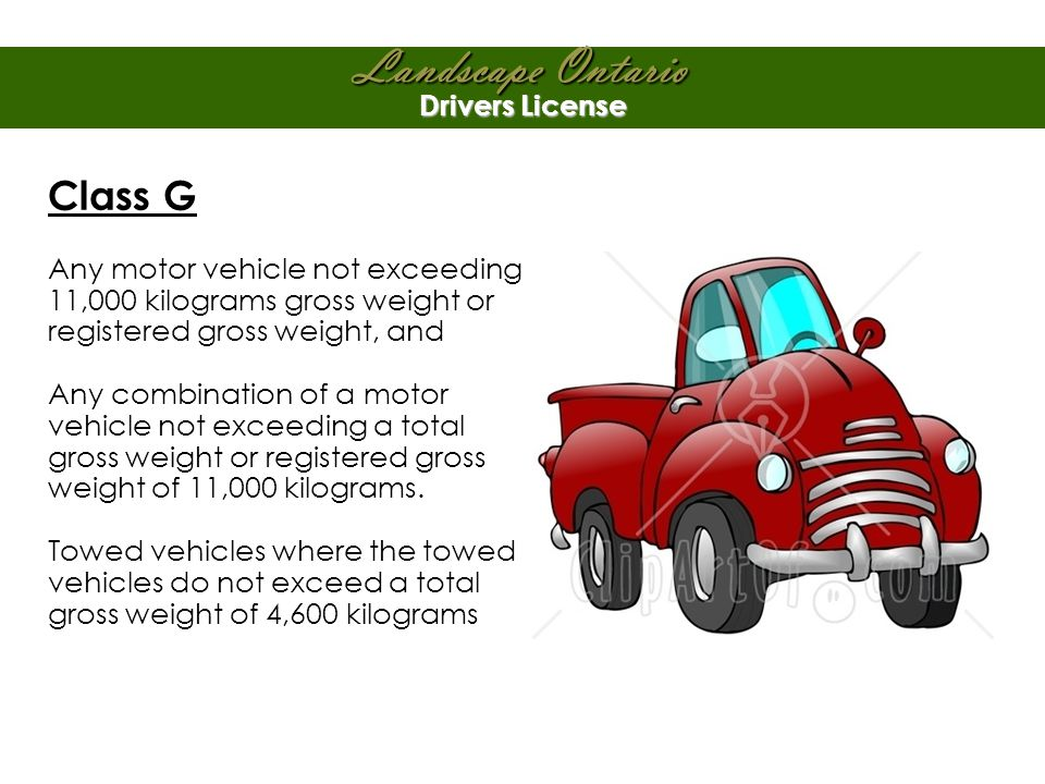 Landscape Ontario Drivers License Class G Any motor vehicle not exceeding 11,000 kilograms gross weight or registered gross weight, and Any combination of a motor vehicle not exceeding a total gross weight or registered gross weight of 11,000 kilograms.