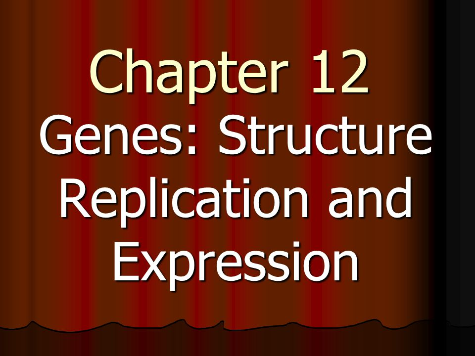 http://www.vidoemo.co m/yvideo.php?i=M2FW VDJEcWuRpVGJ0QTg &replication- transcription-and- translation=