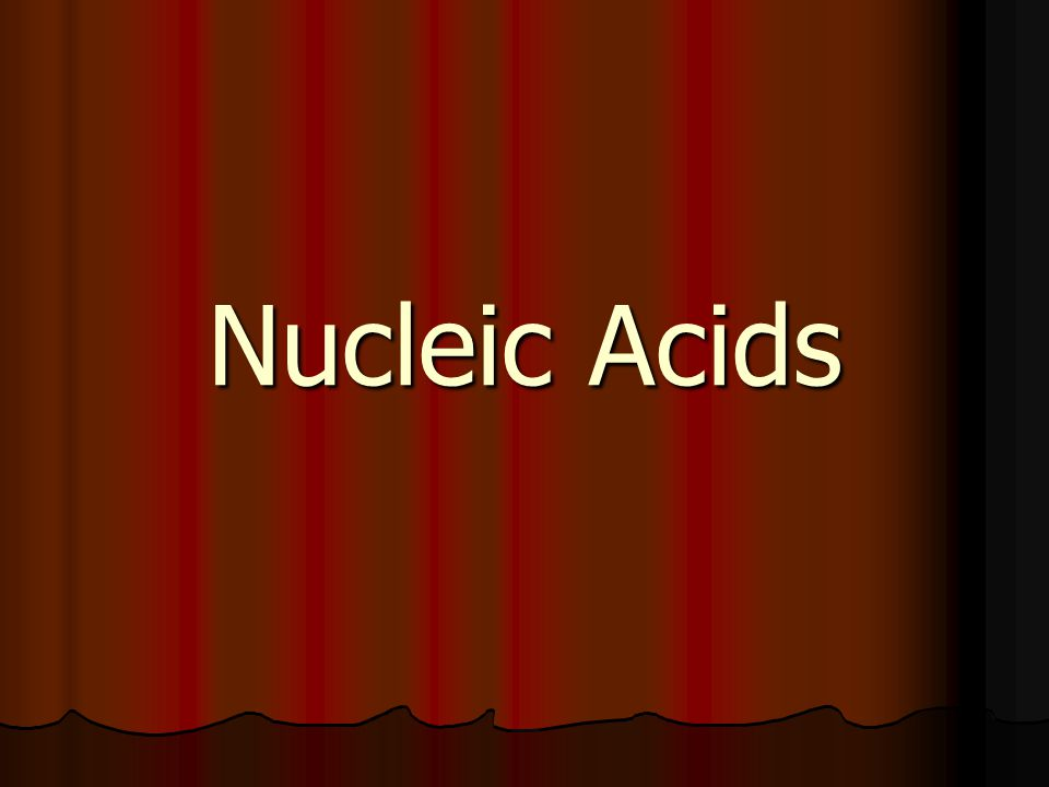 Nucleic Acid Structure Deoxyribonucleic Acid (DNA) polymer of nucleotides polymer of nucleotides contains the bases adenine, guanine, cytosine and thymine contains the bases adenine, guanine, cytosine and thymine sugar is deoxyribose sugar is deoxyribose molecule is usually double stranded molecule is usually double stranded