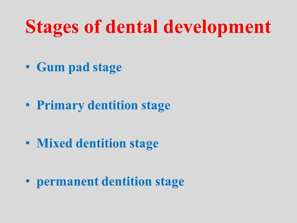 Eruption Sequence/Timing Permanent Dentition Age in years Mx 6 1 2 4 5 3 7 Mn 6 1 2 3 4 5 7 6y 7y 8y 9y 10y 11y 12y