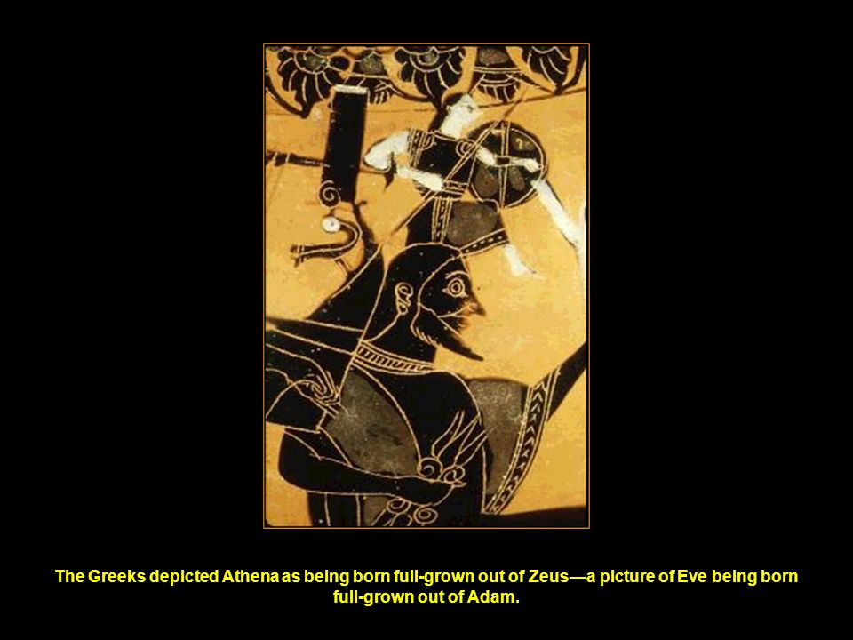 The Greeks depicted Athena as being born full-grown out of Zeus—a picture of Eve being born full-grown out of Adam.