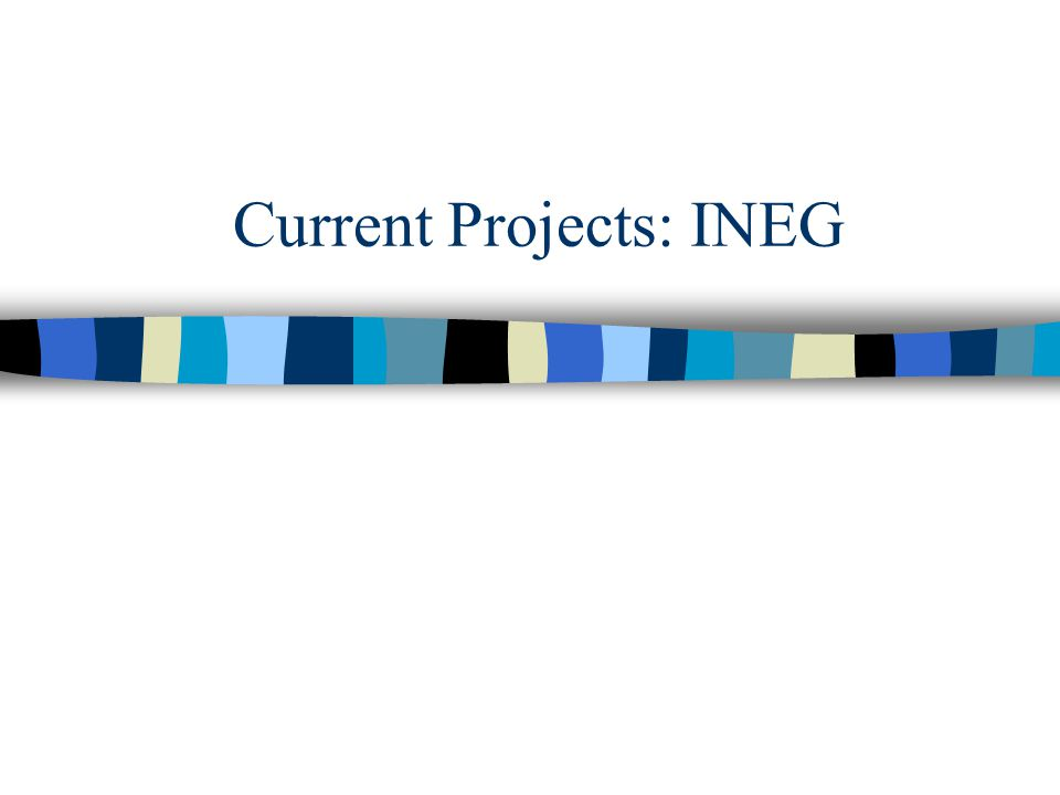 Current Projects: INEG