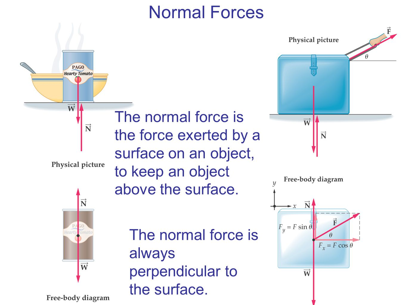 Normal Forces The normal force is the force exerted by a surface on an object, to keep an object above the surface.