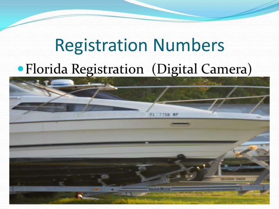 Registration Numbers Florida Registration (Digital Camera)