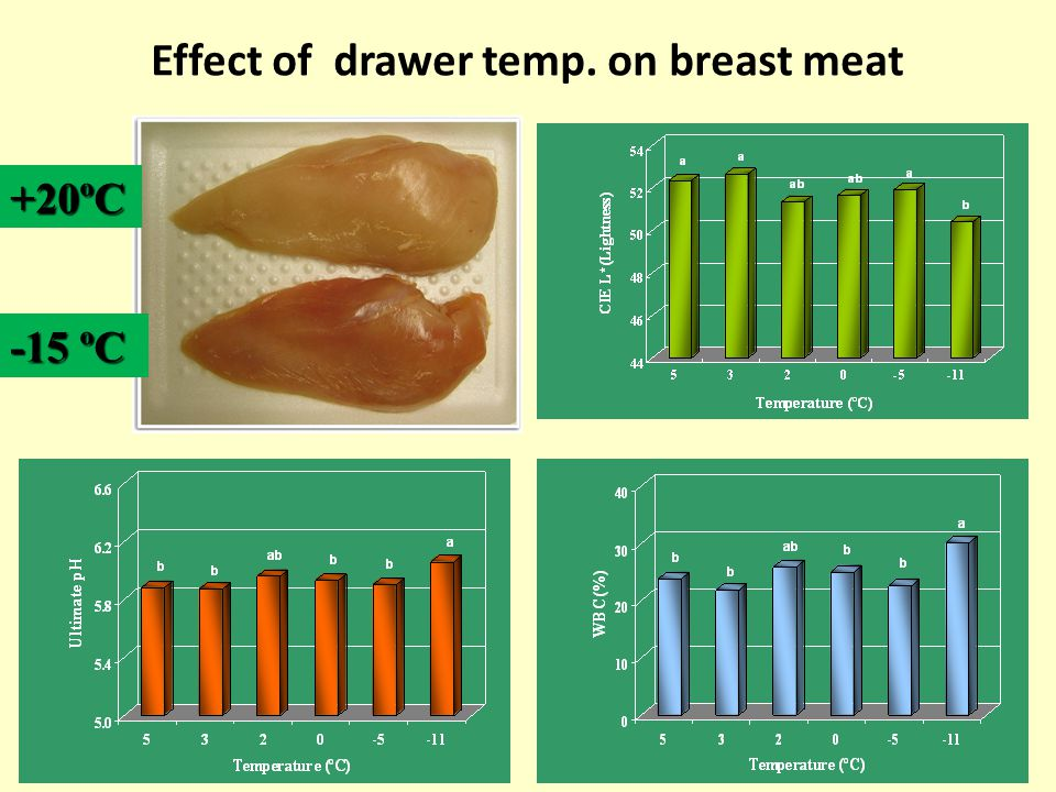 Effect of drawer temp. on breast meat +20ºC -15 ºC