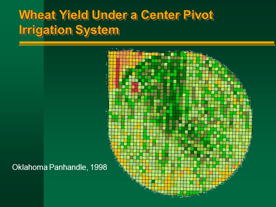 Wheat Yield Under a Center Pivot Irrigation System Oklahoma Panhandle, 1998