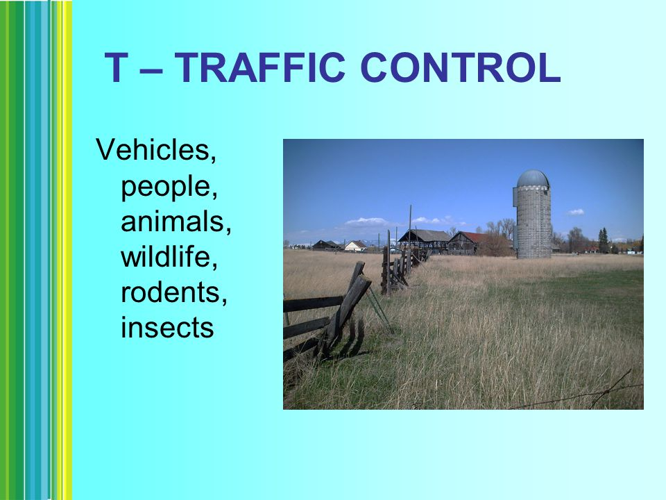T – TRAFFIC CONTROL Vehicles, people, animals, wildlife, rodents, insects