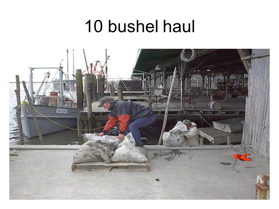 10 bushel haul