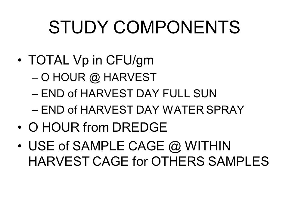 STUDY COMPONENTS TOTAL Vp in CFU/gm –O HOUR @ HARVEST –END of HARVEST DAY FULL SUN –END of HARVEST DAY WATER SPRAY O HOUR from DREDGE USE of SAMPLE CAGE @ WITHIN HARVEST CAGE for OTHERS SAMPLES