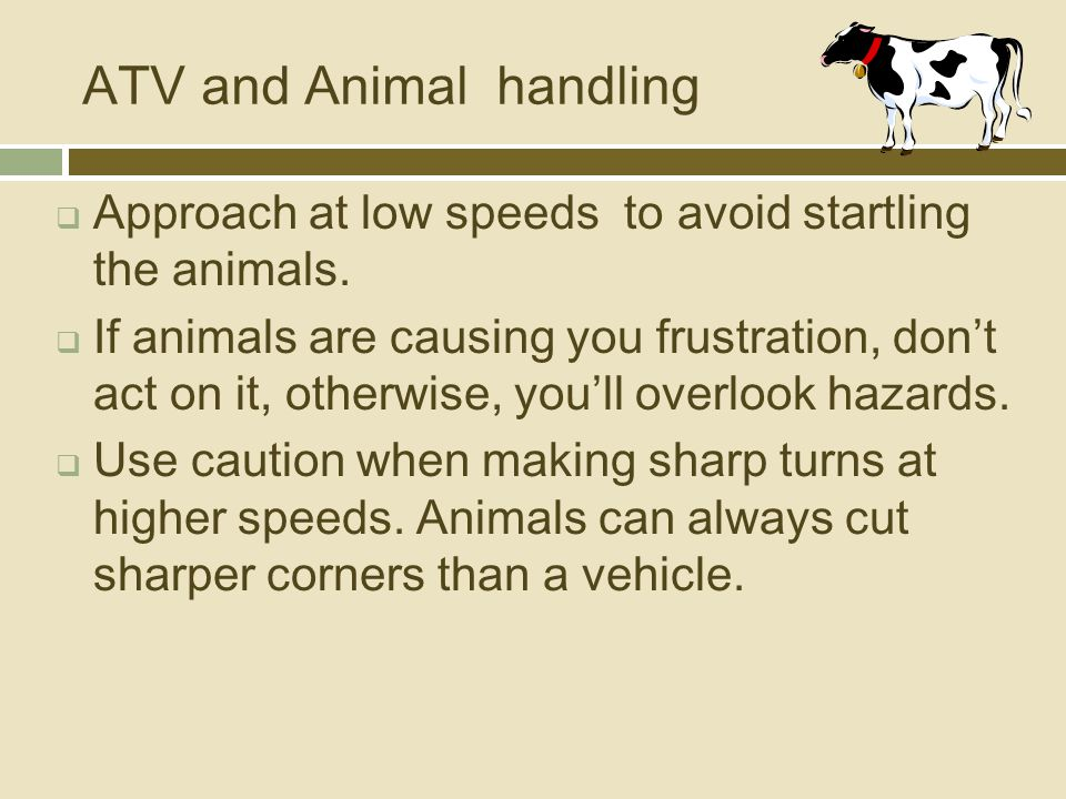 ATV and Animal handling  Approach at low speeds to avoid startling the animals.