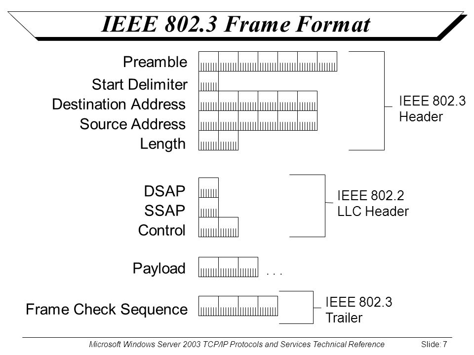 Microsoft Windows Server 2003 TCP/IP Protocols and Services Technical Reference Slide: 7 IEEE 802.3 Frame Format Destination Address Source Address DSAP SSAP Control Payload Length Frame Check Sequence Preamble IEEE 802.2 LLC Header Start Delimiter...