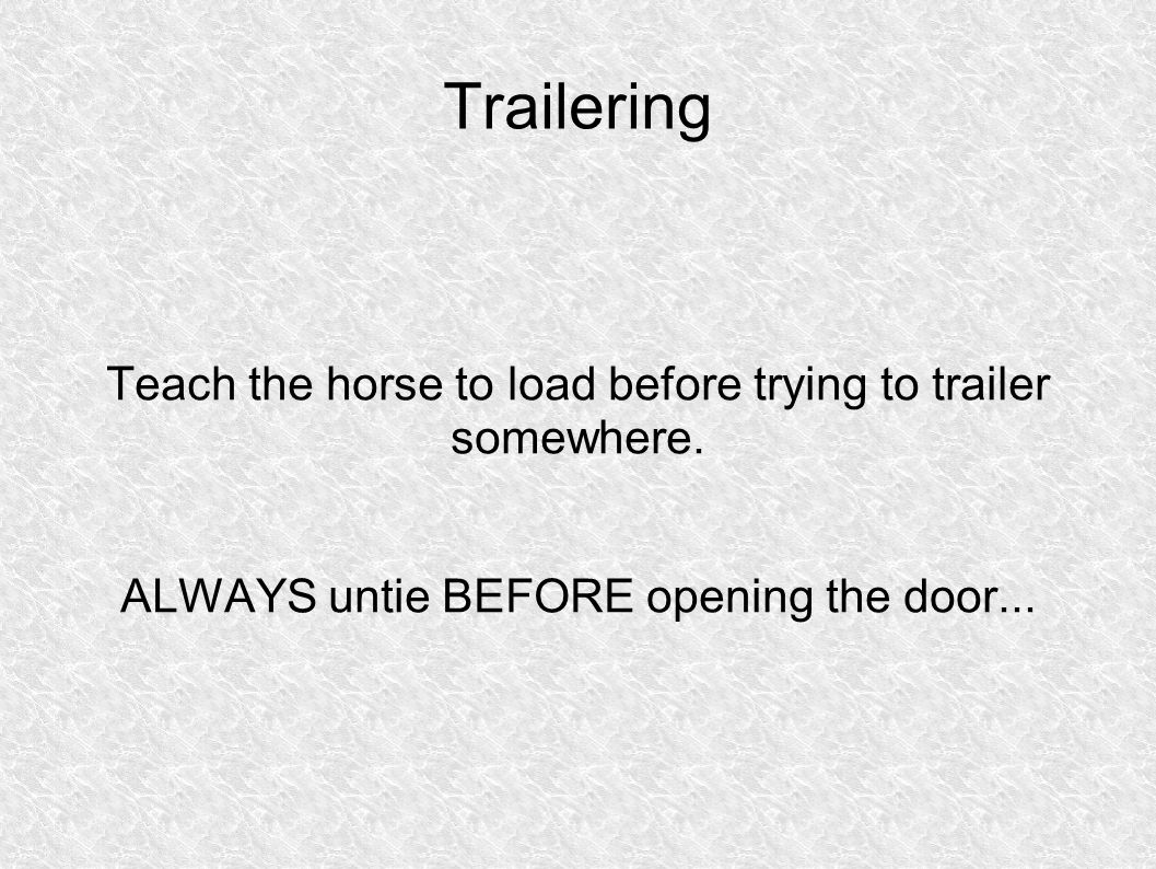 Trailering Teach the horse to load before trying to trailer somewhere.