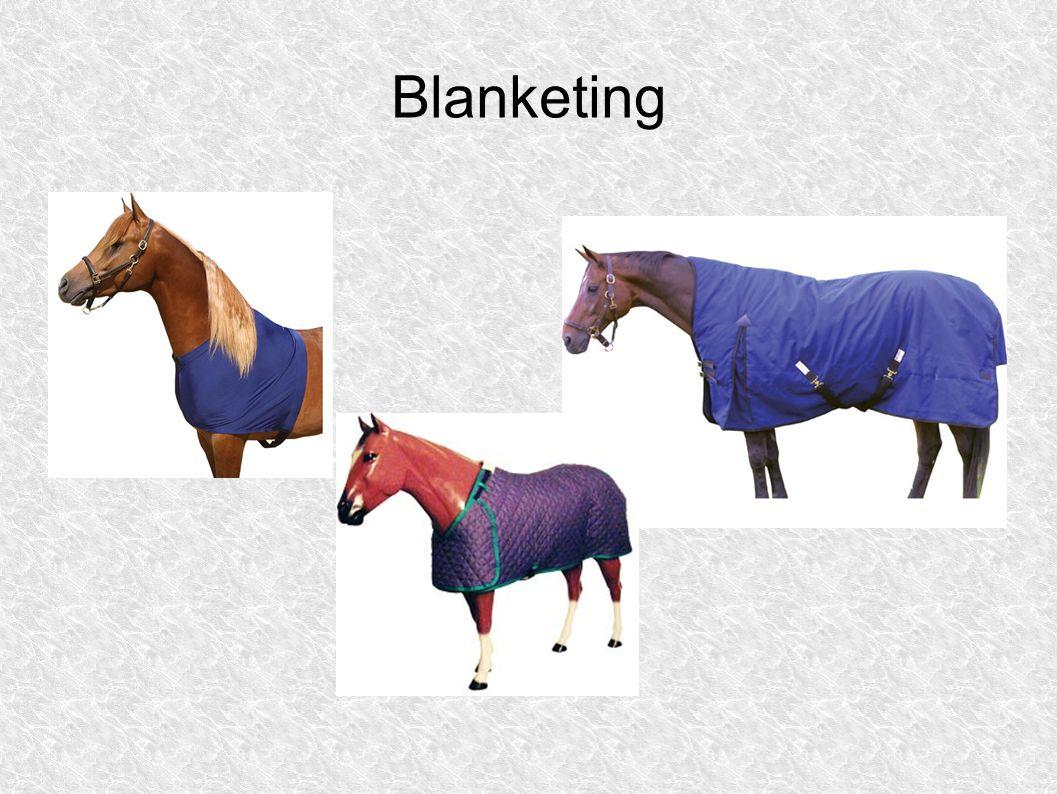 Blanketing
