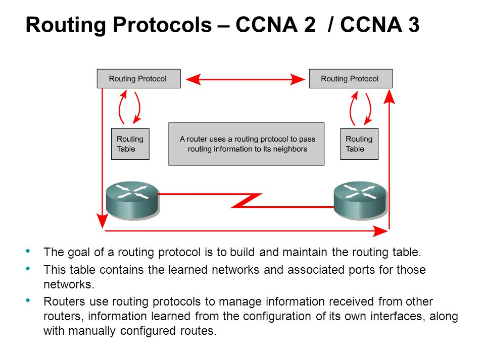 Routing Protocols – CCNA 2 / CCNA 3 The goal of a routing protocol is to build and maintain the routing table.