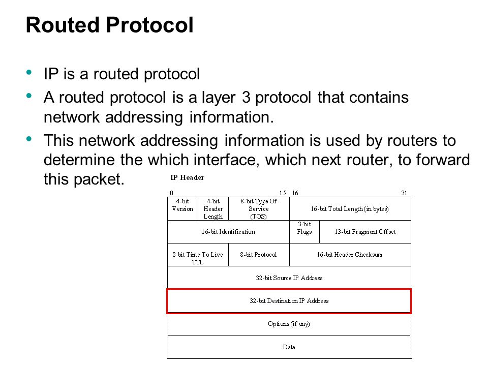 Routed Protocol IP is a routed protocol A routed protocol is a layer 3 protocol that contains network addressing information.