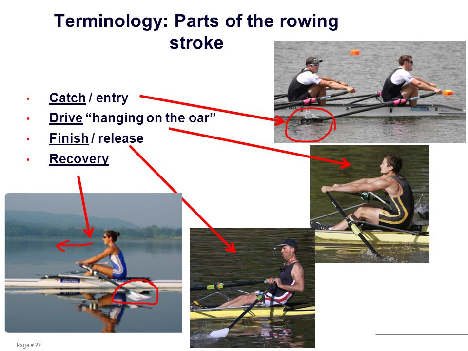 Page # 22 Terminology: Parts of the rowing stroke Catch / entry Drive hanging on the oar Finish / release Recovery