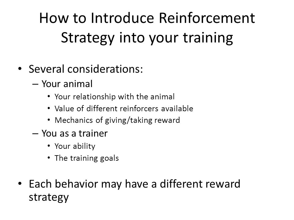 How to Introduce Reinforcement Strategy into your training Several considerations: – Your animal Your relationship with the animal Value of different reinforcers available Mechanics of giving/taking reward – You as a trainer Your ability The training goals Each behavior may have a different reward strategy