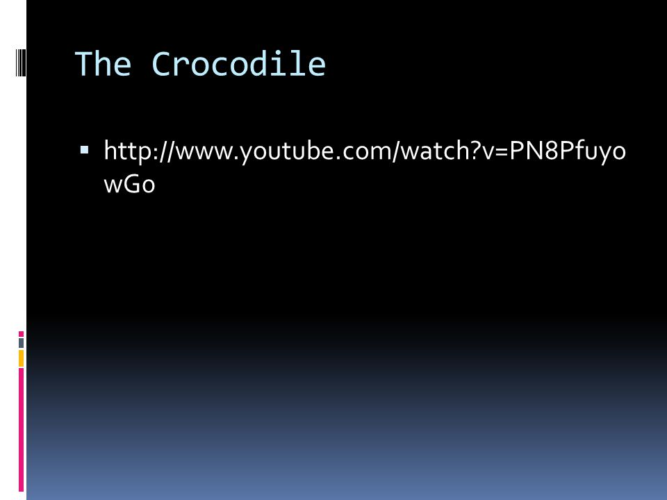 The Crocodile  http://www.youtube.com/watch v=PN8Pfuyo wG0